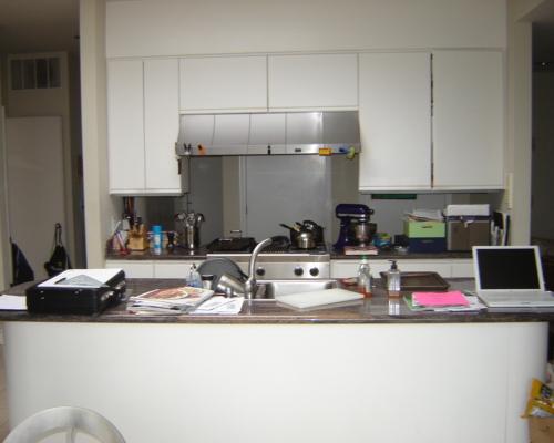 The Pre-Remodel Kitchen