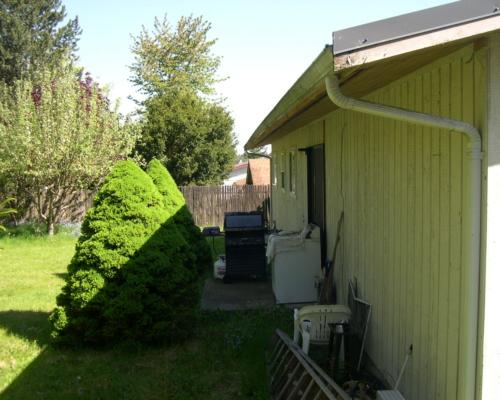 The backyard before