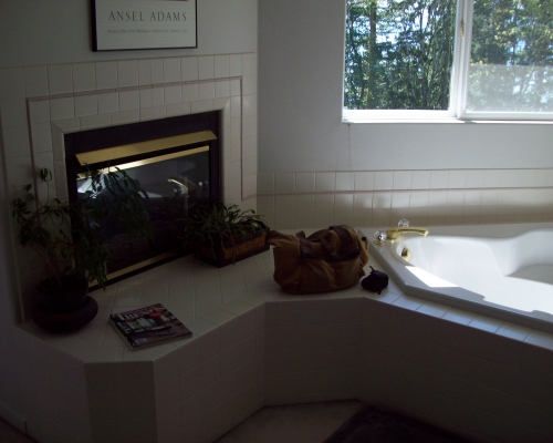 The original fireplace and tub surround